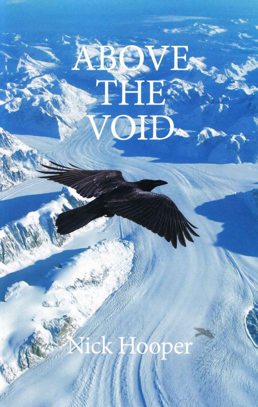 Above the Void book cover